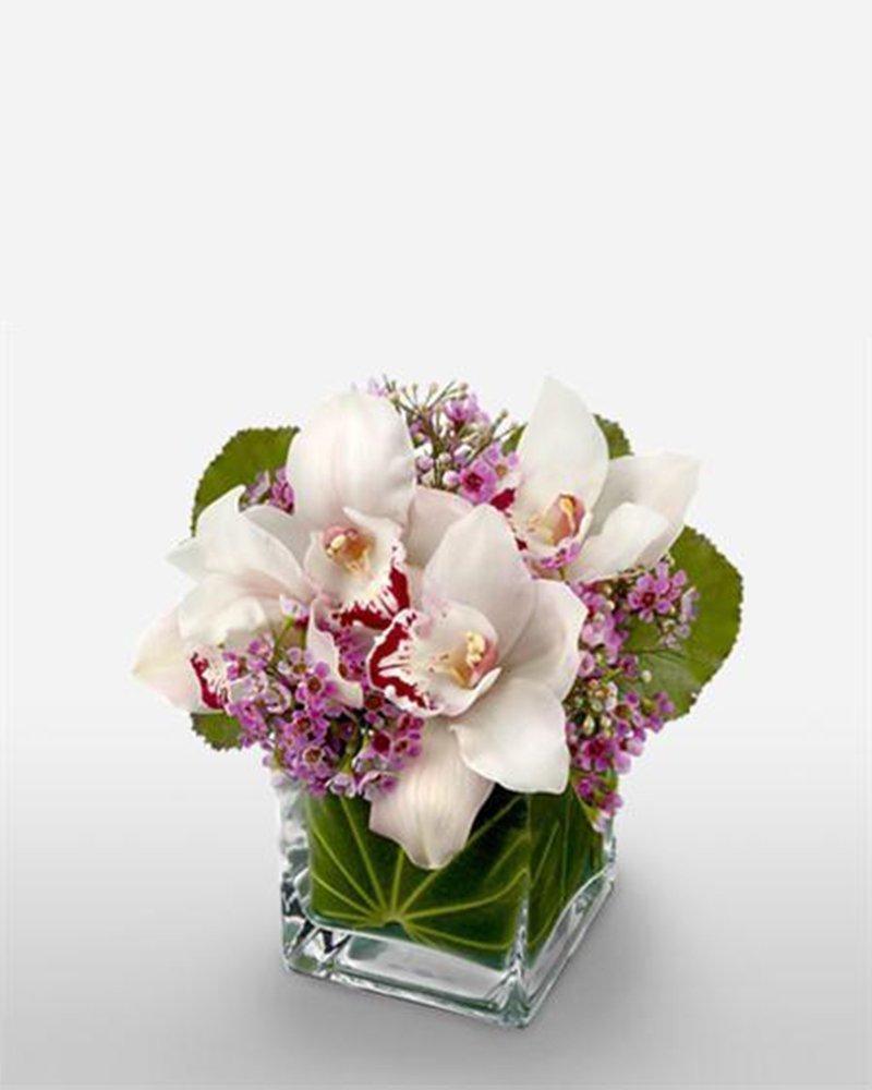 Орхидеи белые букет доставка москва, недорогих букеты доставкой