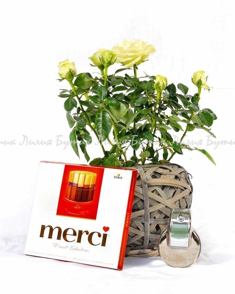 """Любовен сет """"Ромео"""" цветя Варна"""