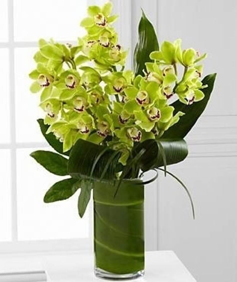 Bouquet orchids