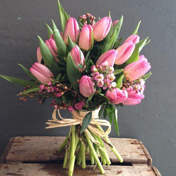 15 tulips hamalitsio